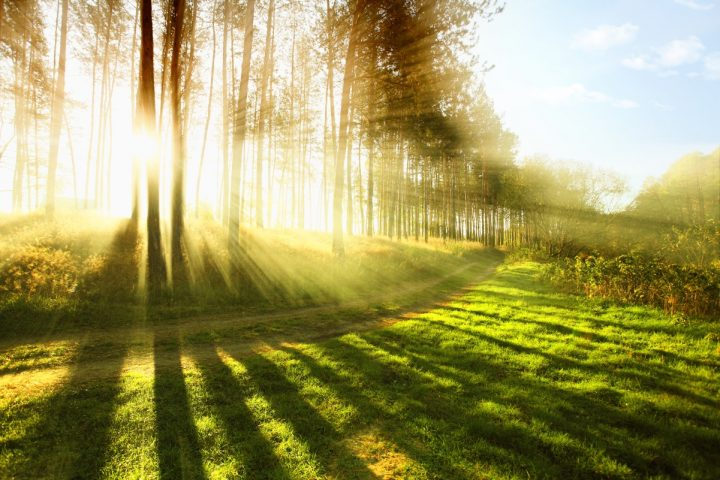 What is Illuminous Living?